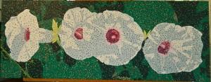 flowers 27